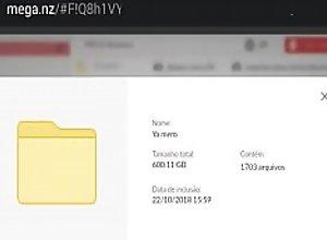Mega pack 600.11 Gb (link..