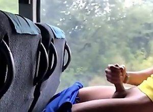 wanking in public train